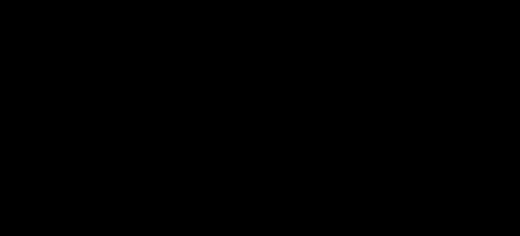 TVアニメ『胡蝶綺 ~若き信長~』 アニメロゴ
