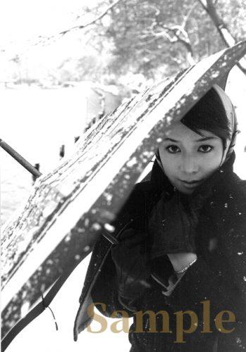 私家版・ひし美ゆり子 クロニクル 2 『続・井の頭公園と私』